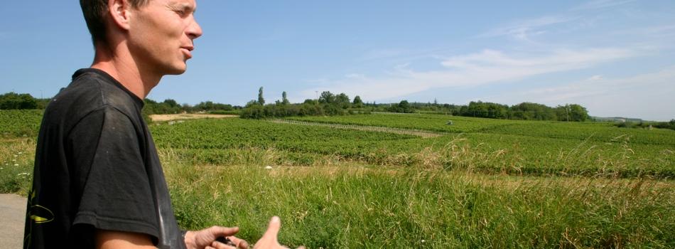 Domaine de la Bongran, Viré-Clessé